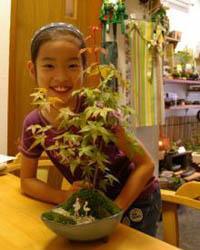 苔玉教室 盆栽教室 様子