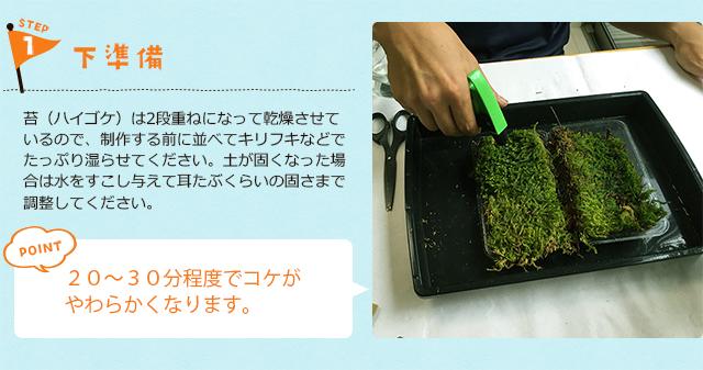 苔玉の作り方1