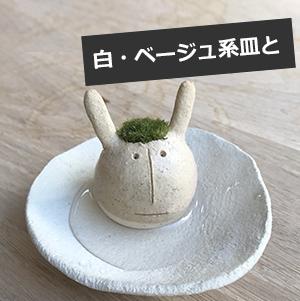 モスウサギ